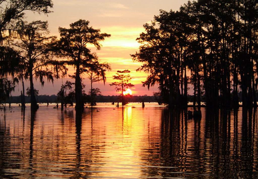 atchafalaya sunset