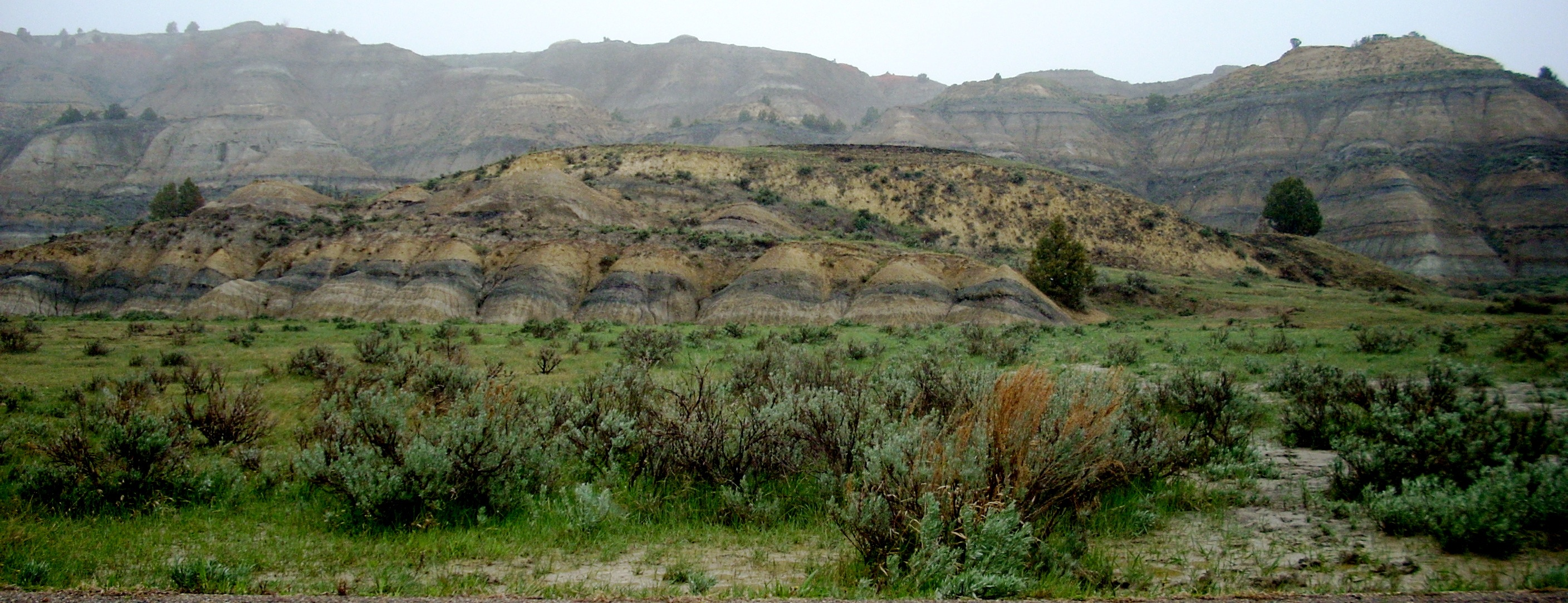 """grassy butte latin singles Instantly view over 3 homes for sale in medora, nd on realestatecom use our """"all-in monthly pricing"""" tool to help you search medora homes that fit comfortably within your monthly budget."""